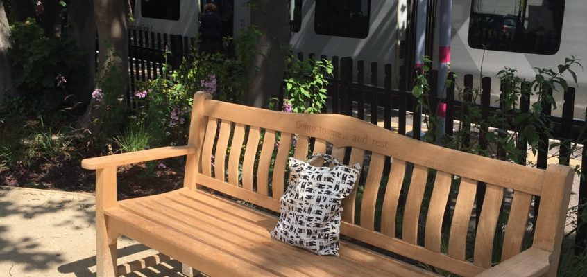 The Resting Bench – Where People Remember